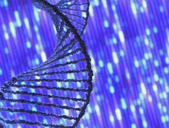 Next-Generation Sequencing: A Valuable Tool in Creating a Personalized Treatment Plan for Cancer Patients
